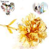 SOKANO 24K Gold Foil Flower Best Gift Valentine Day Mother Day- Carnation (With Cert and Gift Box)