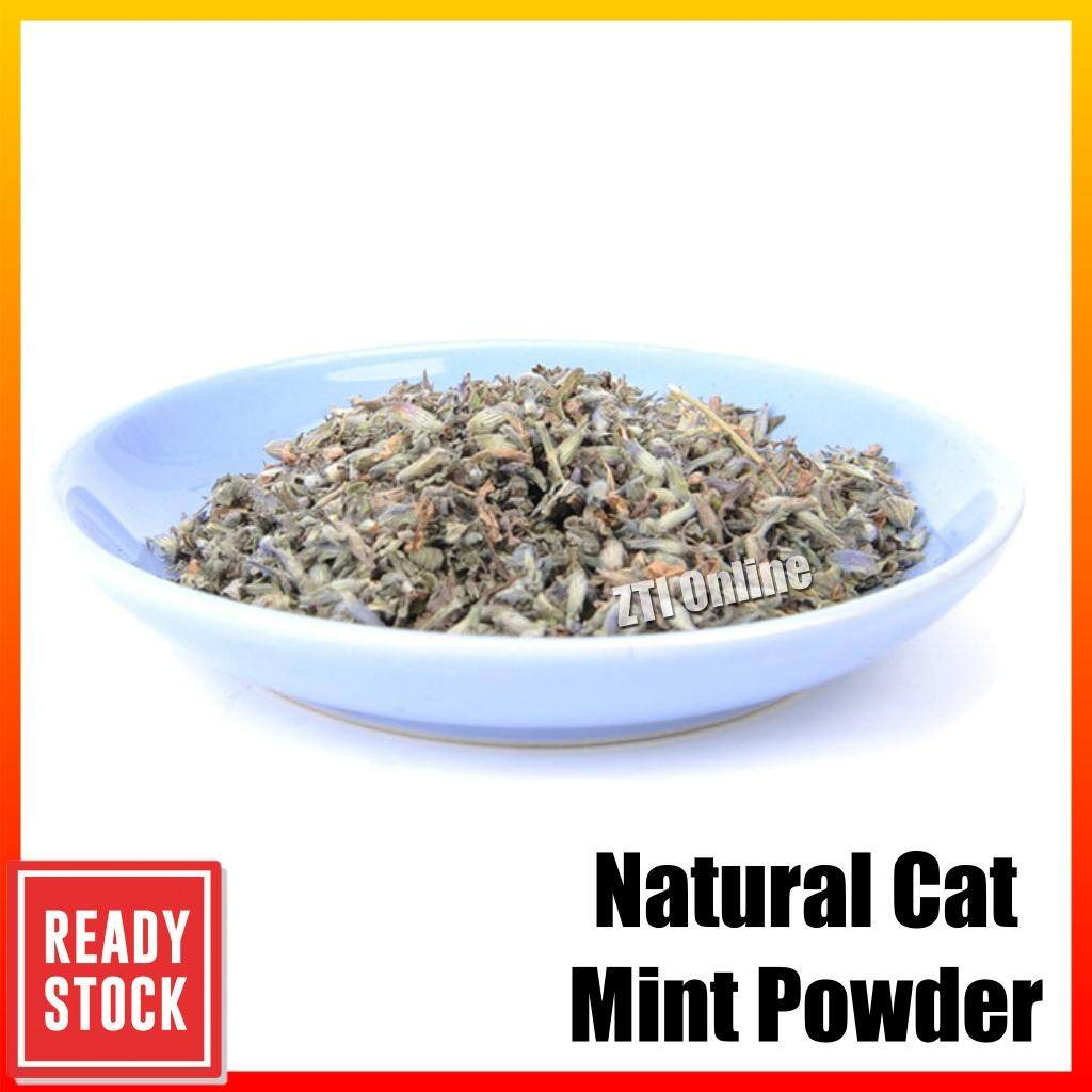 Natural Organic Pet Cat Mint Catnip Cat Treats Catnip Kucing Menthol Flavor