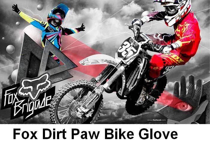 fox glove 1.JPG