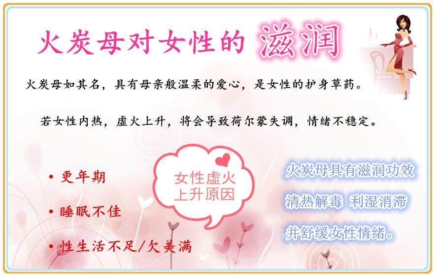Chinese Knotweed 2.jpg