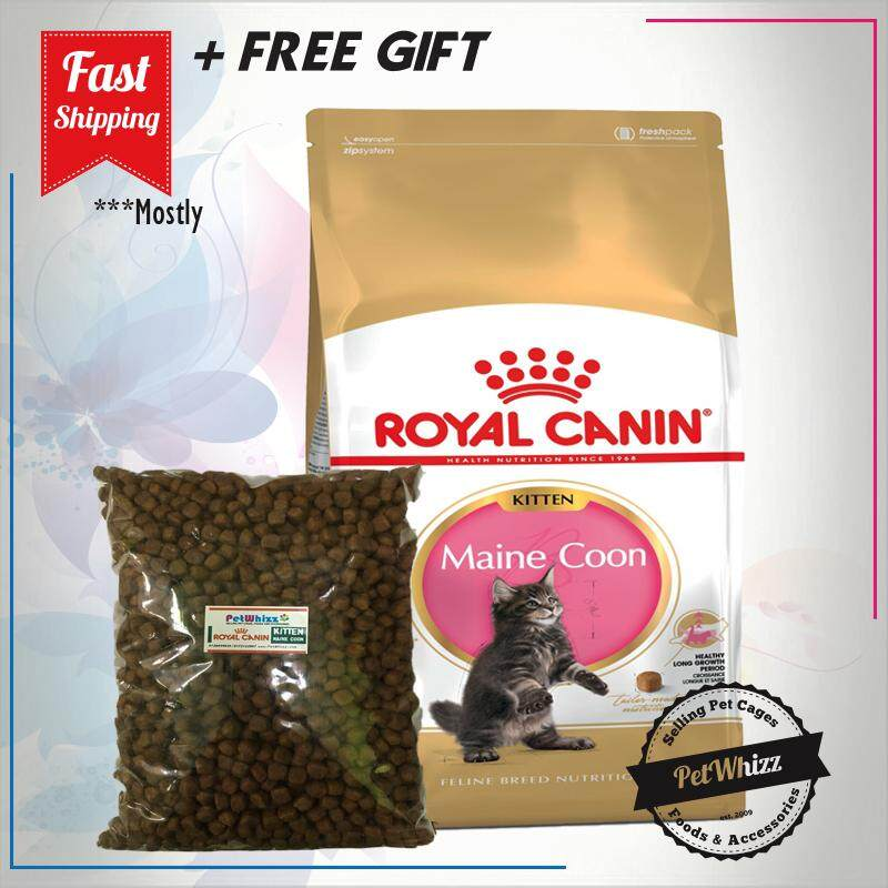ROYAL CANIN MAINE COON KITTEN 1KG ( REPACK 1 UNIT )