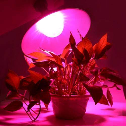 AC 85 - 265V E27 36W 2520LM FULL SPECTRUM 72 LEDS GROW LIGHT WATER RESISTANT PLANT FILL LAMP (SILVER)
