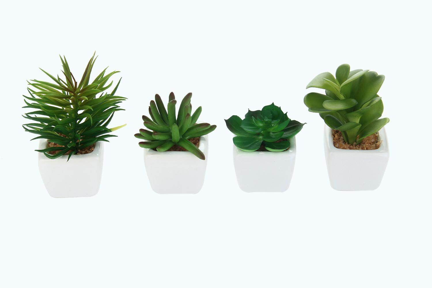 Womdee Set Of 4 Modern White Ceramic Mini Potted Artificial Succulent Plants - intl