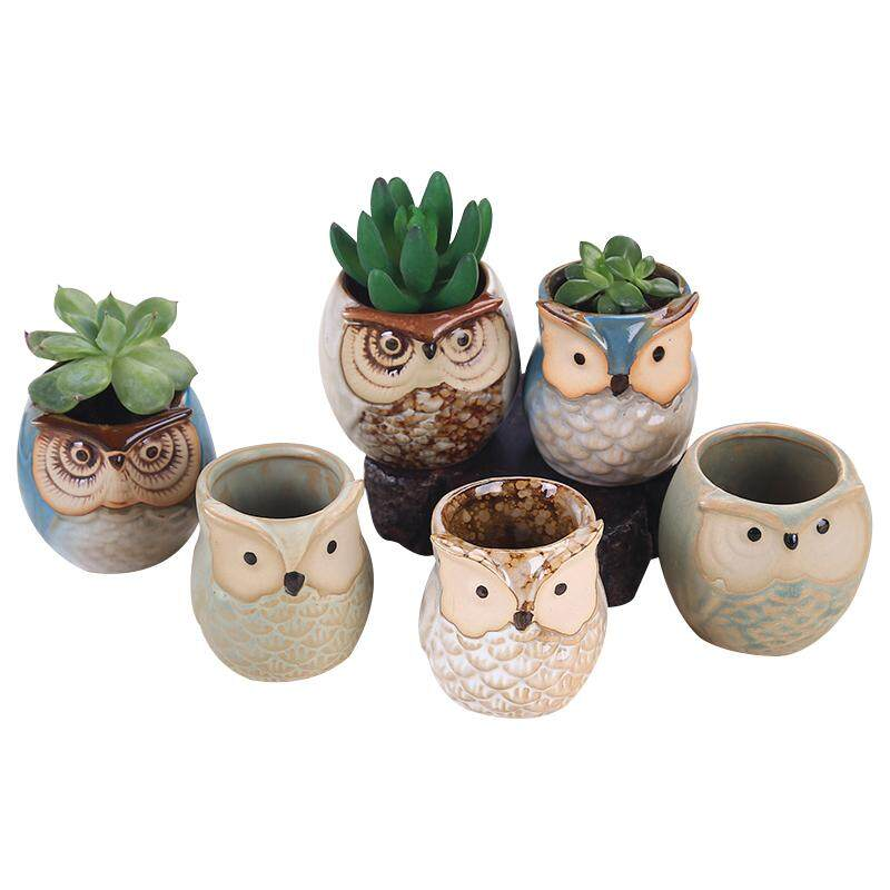 Buy 6Pcs Ceramic Owl Plant Pot Flowing Glaze Base Creative Flower Container As Decorations Specification 6Pcs Intl