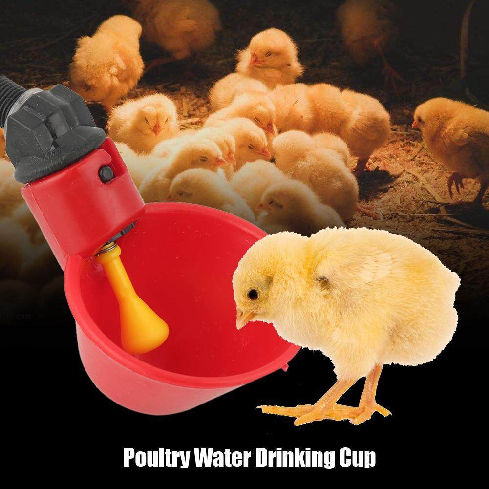 4 Pack Poultry Water Drinking Cups Chicken Hen Bird Plastic Automatic Drinker