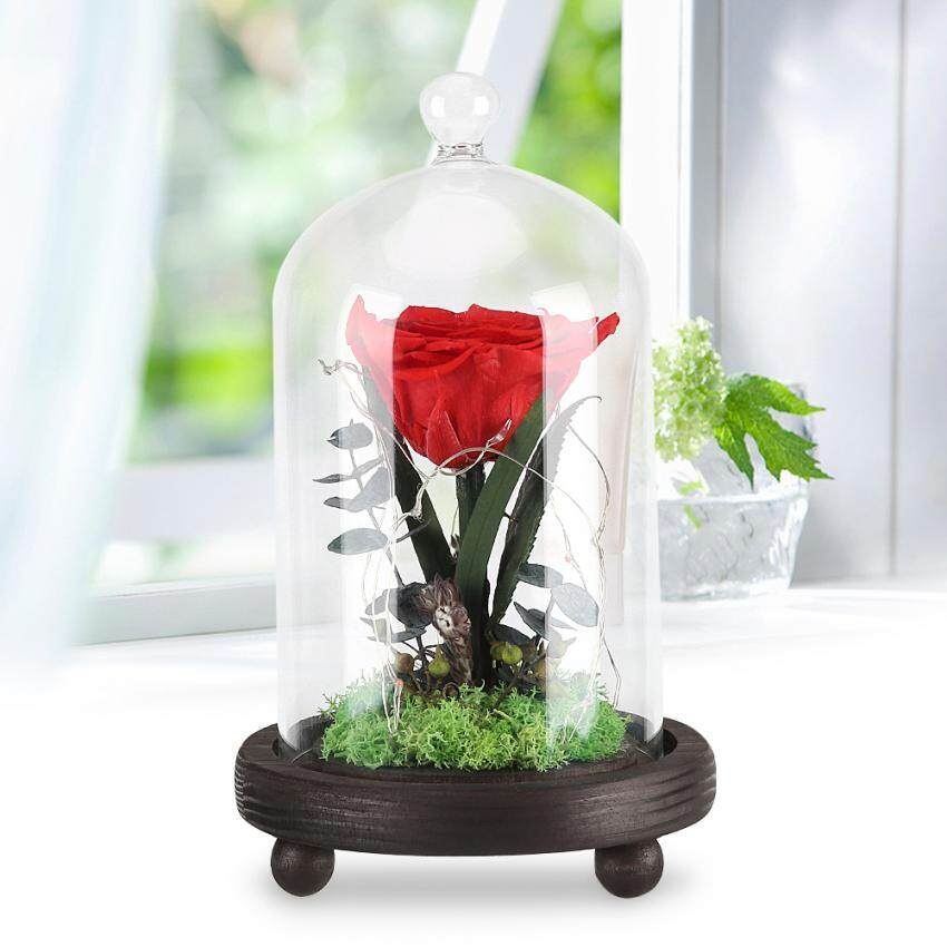 Preserved Rose Flower LED Light with Glass Cover Wooden Base Valentines'Day Wedding Gift