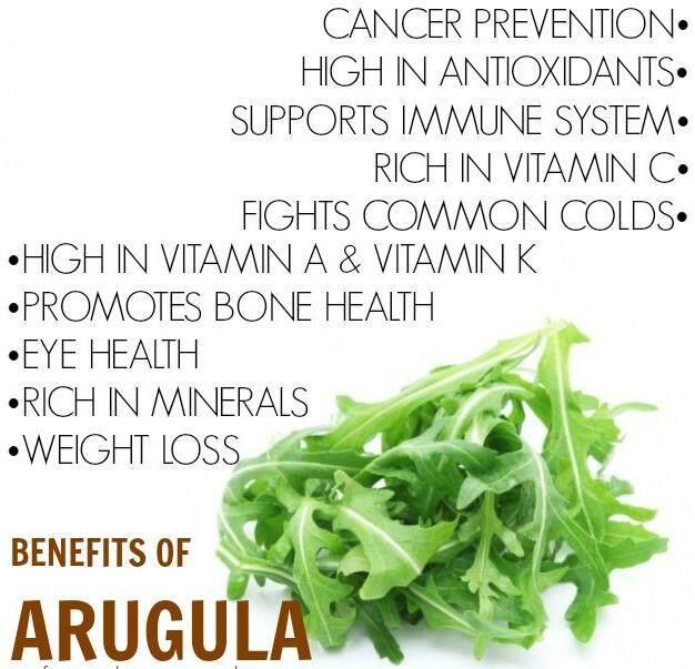 Arugula benefits.PNG