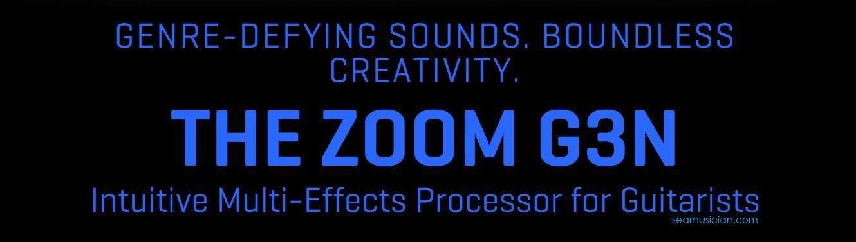 Zoom G3N PEDAL(3).JPG
