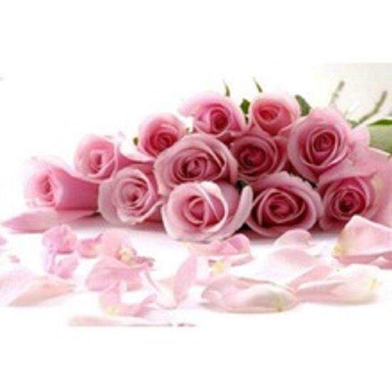 3x Packs Pink Rose Flower Seeds- LOCAL READY STOCKS