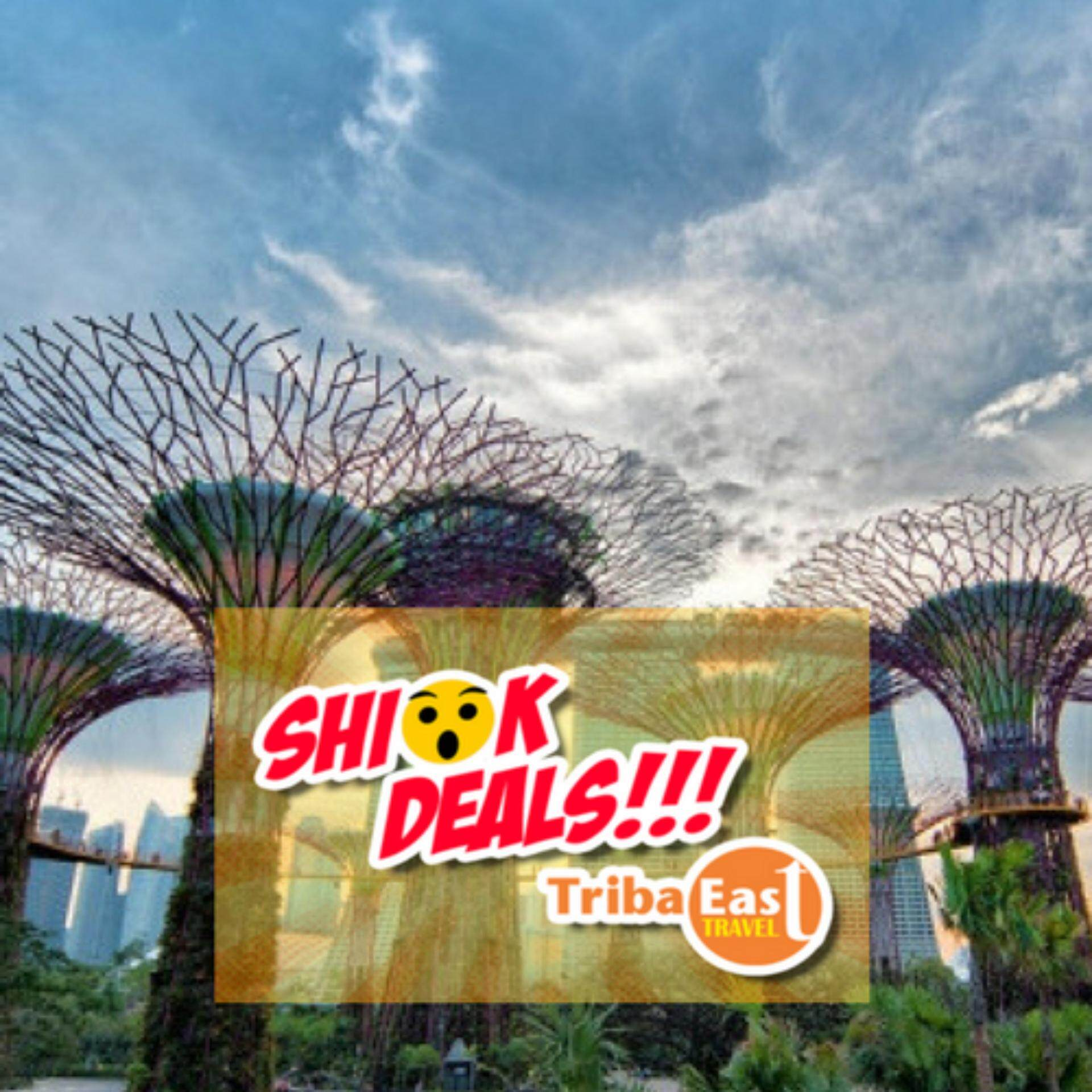 Singapore Gardens By The Bay + Flower Dome+Cloud Forest (Child)