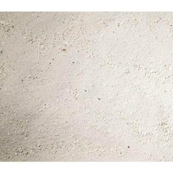 Carib Sea ACS00794 Arag Alive West Caribean Sand for Aquarium, 20-Pound, 2 Per Case - intl