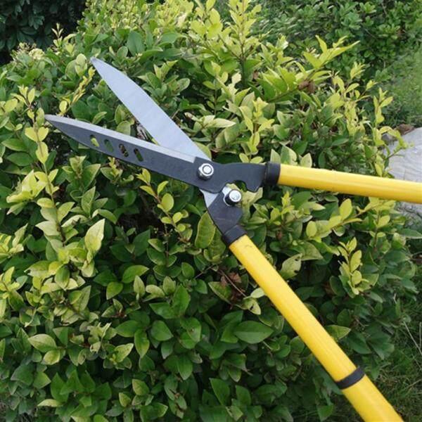 72CM Large Garden pruner pruning clipper Grass shear lawn cutter cut clip tool Shrub Orchard snip hedge