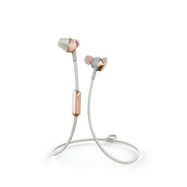 ALH Fitbit Flyer Wireless Headphones, Lunar Gray - intl