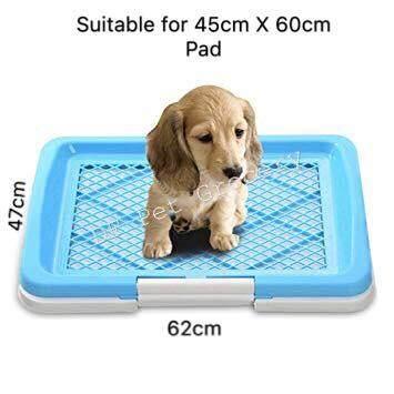 Dog Toilet Tray 62cm X 47cm - Medium - Random Color 6496