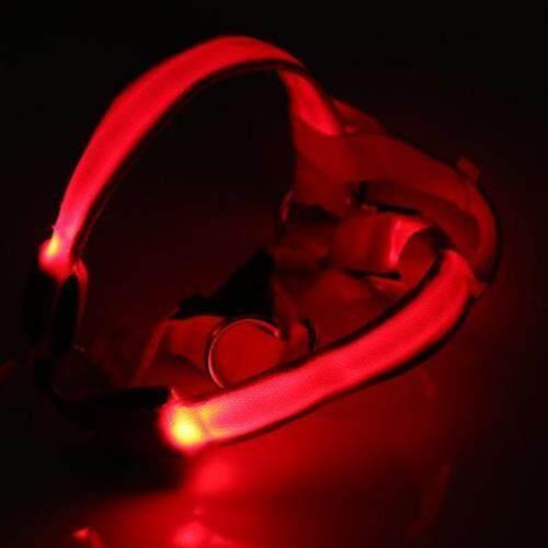 LEDS PET DOG CAT SAFETY COLLAR GLOW FLASH LIGHT BELT LEASH TETHER ROPE (RED)