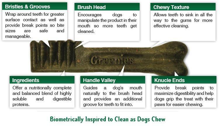 dog-bone-inset.jpg