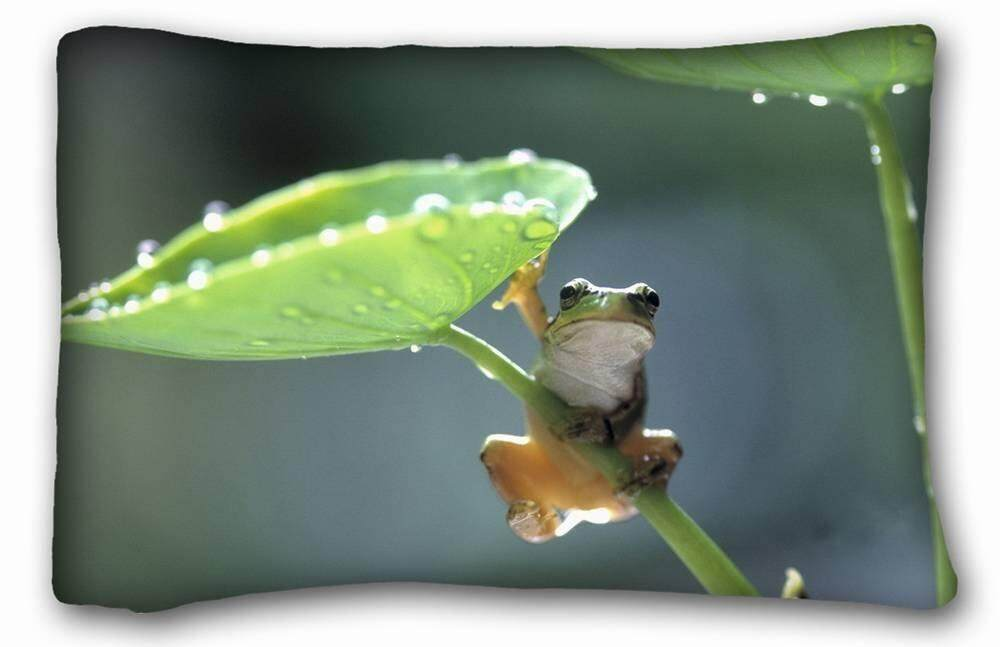 Kustom Characteristic (Hewan Katak Payung Daftar) Lembut Bantal Kasus Sarung 20*30 Inci (Satu Sisi) ritsleting Sarung Bantal Cocok untuk Tempat Tidur Queen-Internasional