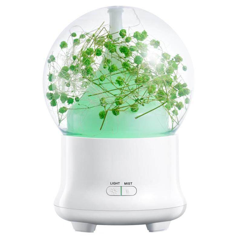 binwu (UK Plug)100ml Essential Oil Diffuser,Preserved Fresh Flower Ultrasonic Aromatherapy Diffusers With 7 Changing Color LED Lights,2 Setting Mist Mode And Waterless Auto Shut-off For Home,Office,Yoga (UK Plug) Singapore
