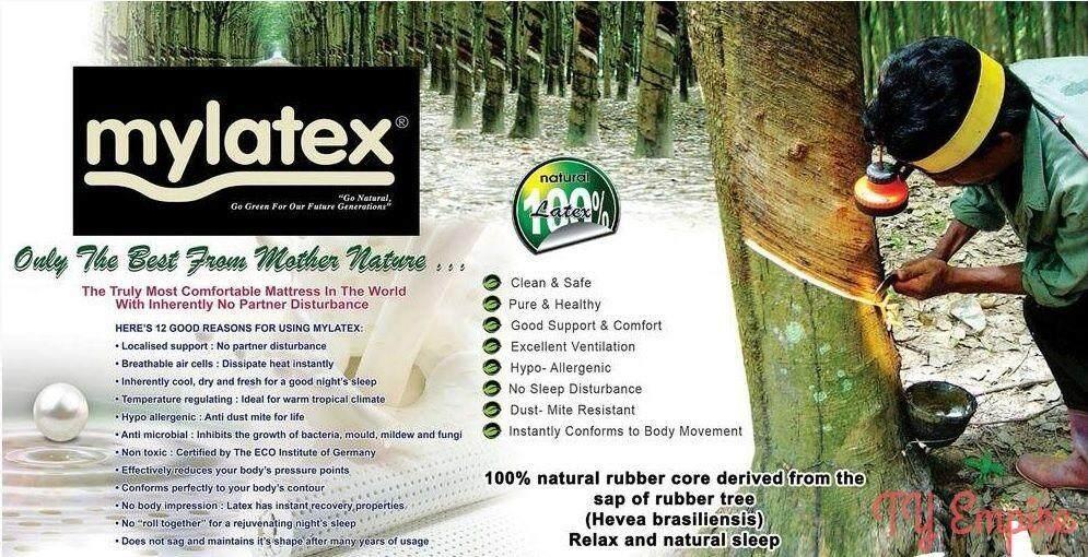 mylatex pillow 5.jpg