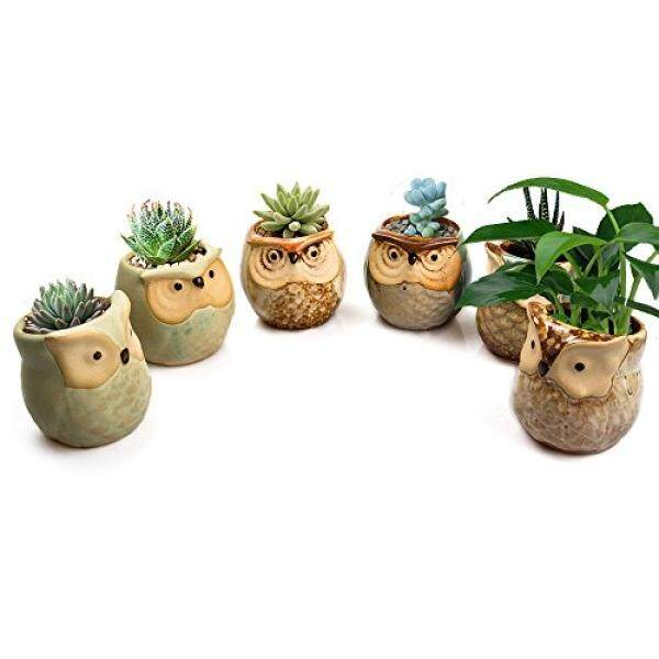 STARVAST STARVAST 6 Pcs Owl Pots, Little Ceramic Succulent Plant Pots, Cactus Planter Pot, Window Sill Bonsai Flower Pot with a Drainage Hole (2.4 inches, Plant not included) - intl