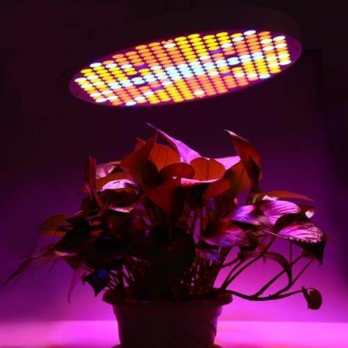 AC 90 - 265V 50W LED GROW LIGHT FILL LAMP WITH 250 LEDS (WHITE GREY)