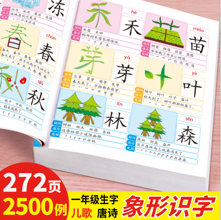 Kid Learning Mandarin Chinese Book 2500 word Nice Picture Literacy learn Chinese Word