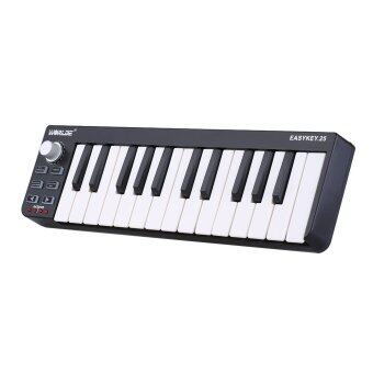 Harga Portable Mini 25-Key USB MIDI Keyboard Controller with USB Cable