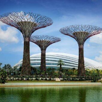 Harga Singapore Gardens By The Bay-Flower Dome+Cloud Forest (Child)