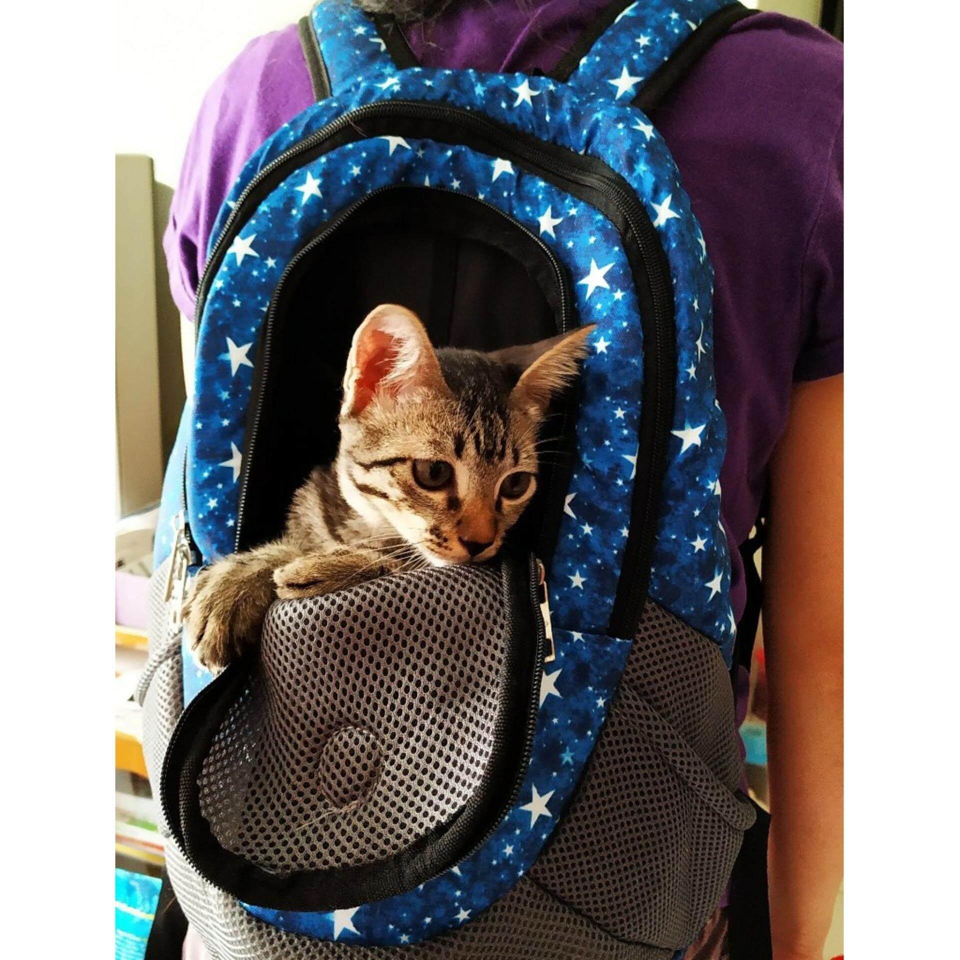 (NEET NEKO) Pet Carrier Bag for tea cup dog / kitten / pet bag / pet backpack(Blue Star)