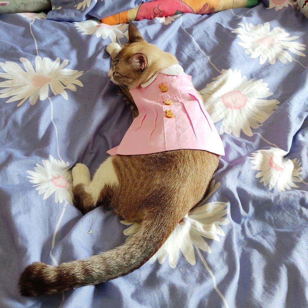 (NEET NEKO) Bunny Harness Dress