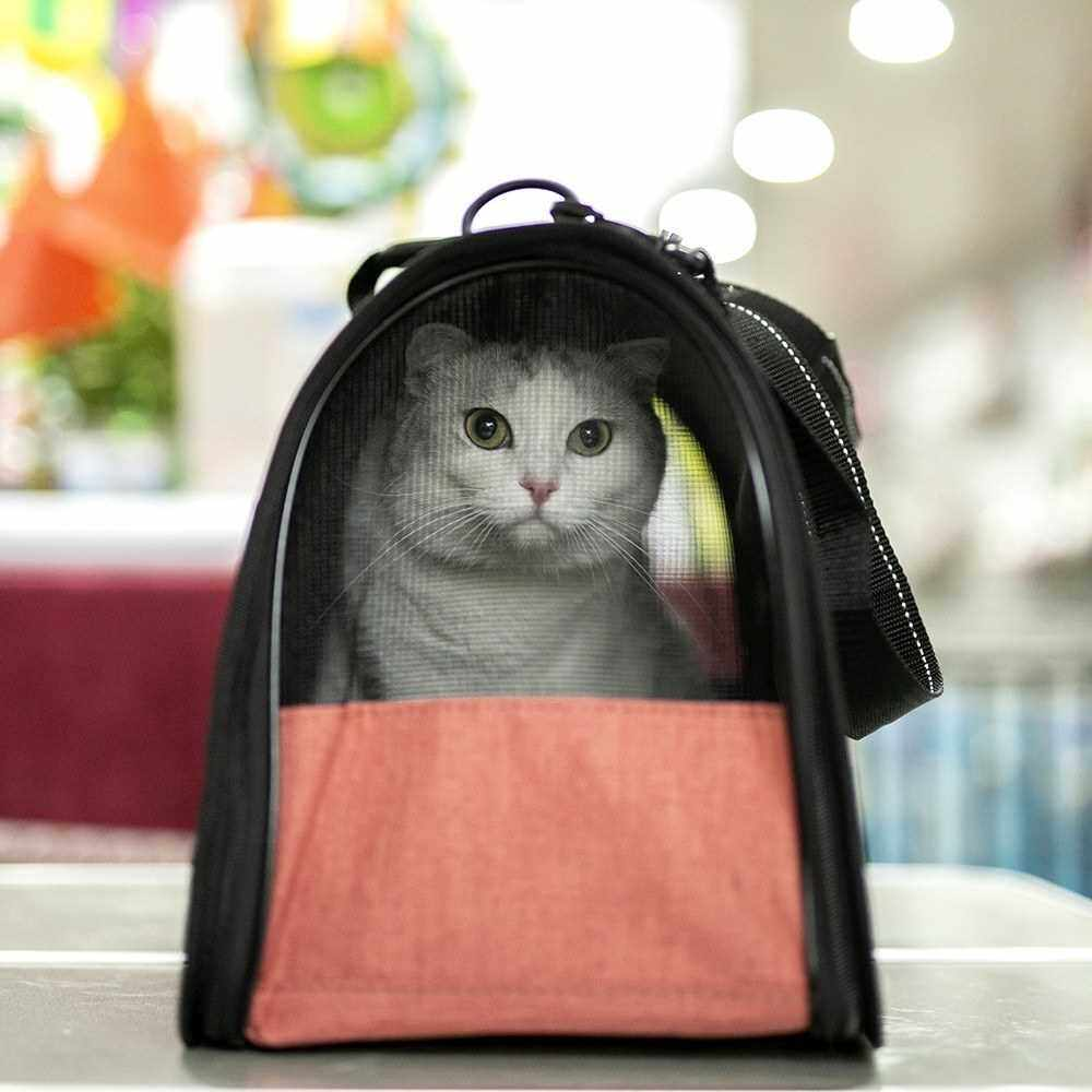 Best Selling Portable Pet Cats Dogs Carrier Cat Dog Pet Travel Bag Designed for Travel Hiking Walking Outdoor for Weight within 4kg (Gray & Black)