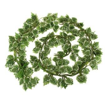 Harga BolehDeals 12Pcs Artificial Wall Hanging Ivy Vine Foliage Decor White Border Grape Leaf