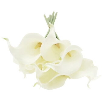 Harga 10 PCS Calla Lily Artificial Flowers Bridal Wedding Bouquets Home Party Decoration Flower White