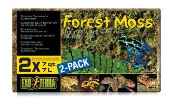 Harga Forest Moss