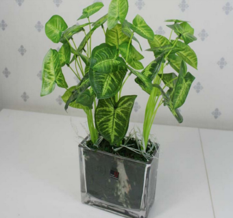 Harga Artificial Lifelike Green Leaves Potted Plant Flowers DIY Home Office Wedding Hall Room Decoration