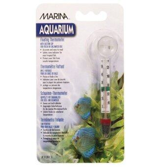 Harga Marina Floating Thermometer with Suction Cup - Celsius andFahrenheit