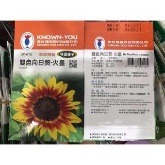 Sunflower Seeds B