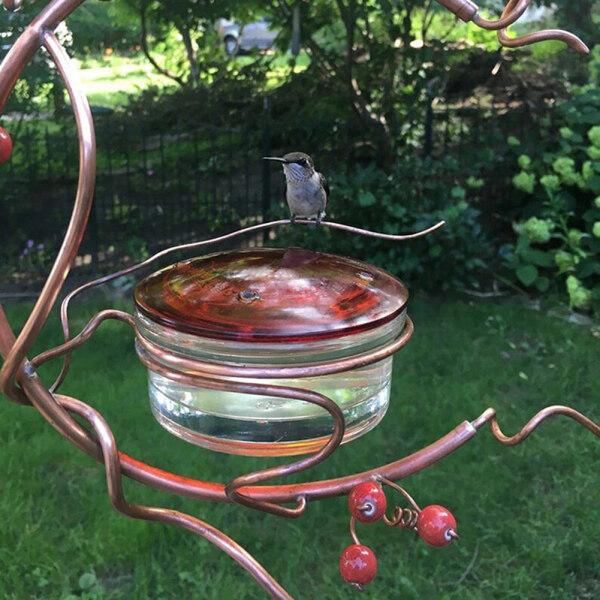 [Livejoy] Hummingbird Trung Chuyển, Ngoài Trời Vườn Kim Loại Treo Trái Cây Berry Có Thể Tháo Rời Cho Chim Tự Ăn
