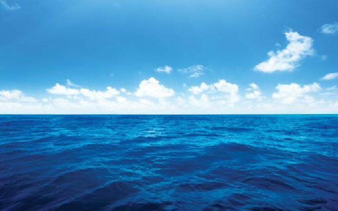 5.5L Seawater for Brine Shrimp Hatching
