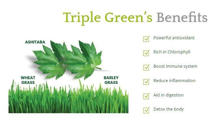 Dynamic Nutrition Organic Volcanic Triple Green 90G