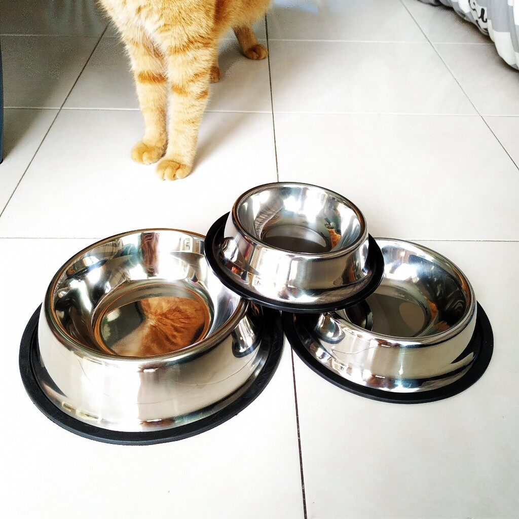 (NEET NEKO) Stainless Steel Pet Bowl