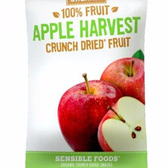 Harga 2017 New Sensible Foods ALL NATURAL CRUNCH DRIED FRUIT APPLE (L) 100% Fruits From Nature/Natural Food/ Healthy Snaks/ Best Buy