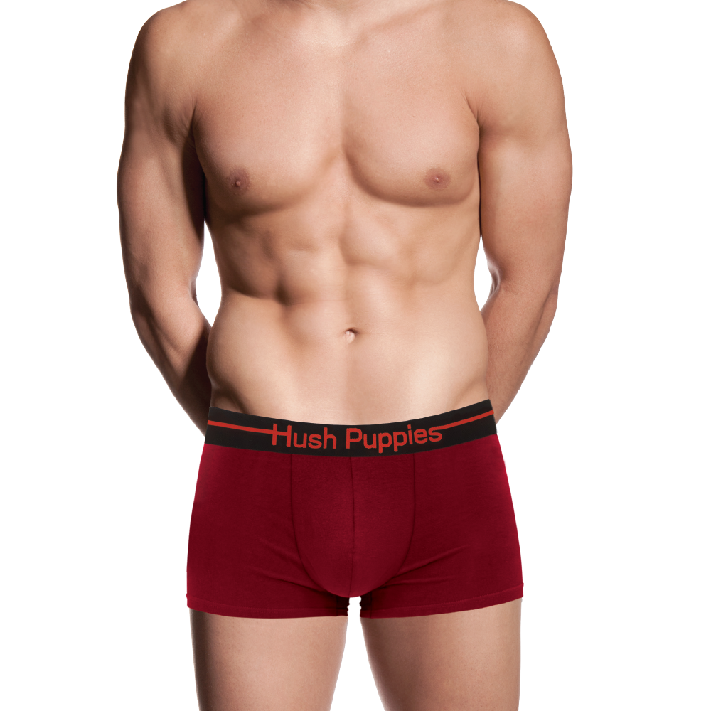 Hush Puppies 2 Pack Cotton Elastane Trunk  HMX039298
