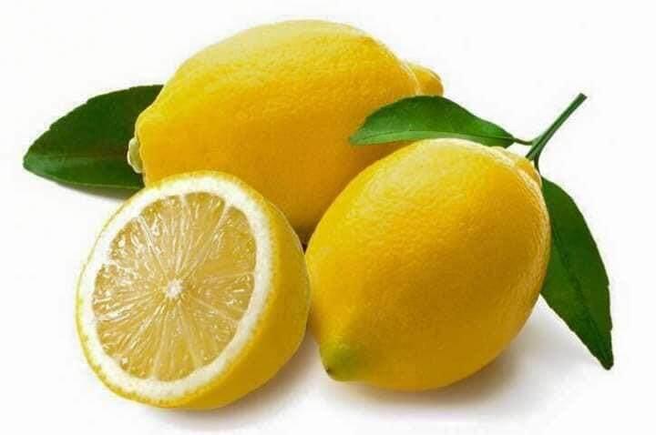 Pokok Lemon Australia