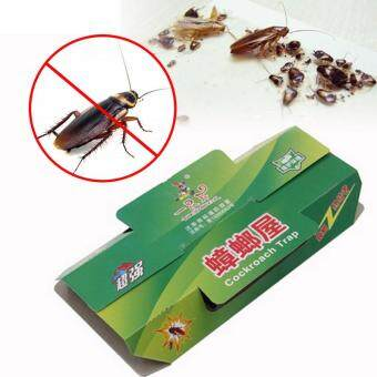 Fashion Cockroach Killer Killing Bait Sticky Catcher Traps Cockroaches House Design