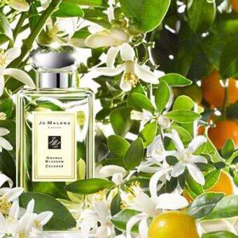 Harga Orange Blossom Cologne Jo Malone London 100ml (Original-Tester)