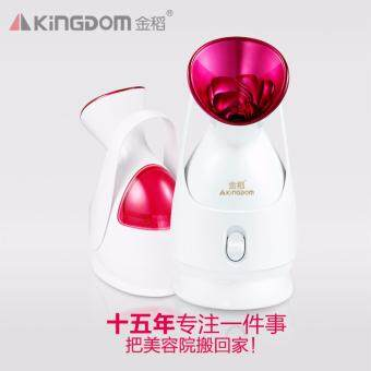 Harga the large water tank face steaming device nano facial sprayer humidifier water artifact KD2331A