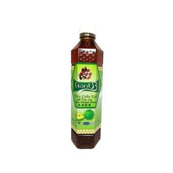 Harga Apple Honey GiantB Apple Vinegar Honey 1000g