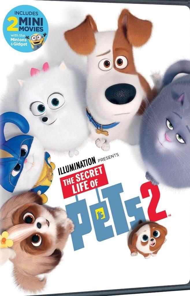 English Animation Movie The Secret Life of Pets 2 DVD