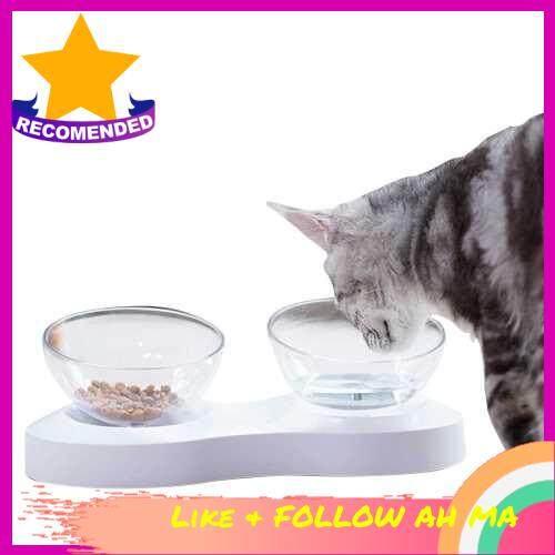 Best Selling Cat Bowl Pet Feeders Adjustable Transparent Tilted Raised Non-Slip Pet Bowl Portion Control Food Bowl for Pet Cat Dog (Standard)